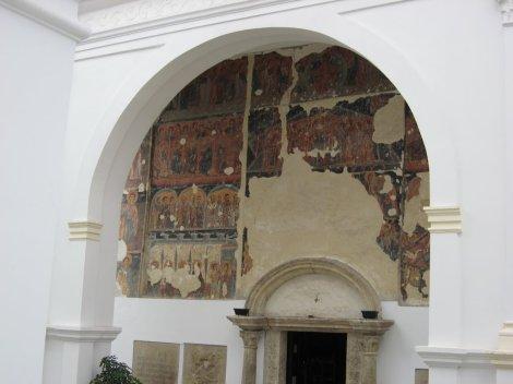 2. Man Krusedol, Serbia 4
