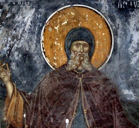 1. Sf Cuv Antonie cel mare 1.1