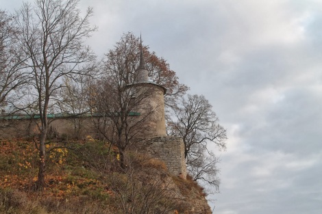 Man Snetogorsk, Pskov, Rusia 20