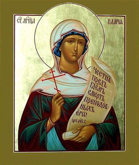 Sf Mc Ilaria 1.1