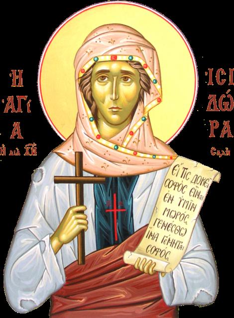 Sf Cuv Isidora 3