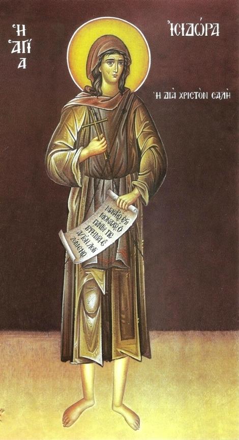 Sf Cuv Isidora 4.1